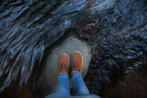 quarantine on a rock